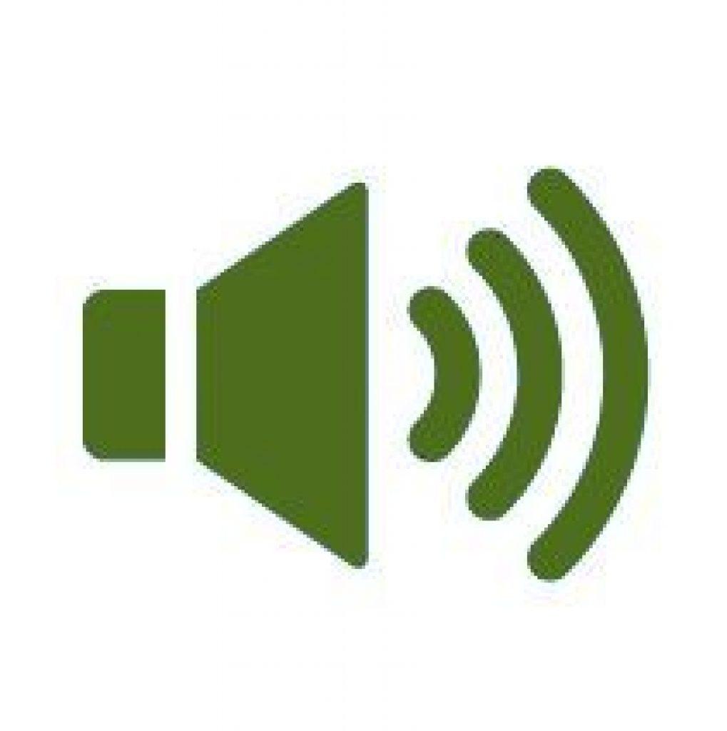 image qui montre le bruit